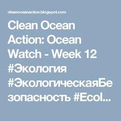 Clean Ocean Action: Ocean Watch - Week 12 #Экология #ЭкологическаяБезопасность #Ecology #EnvironmentalSafety