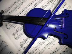 Color Azul Cobalto - Cobalt Blue!!! Violin