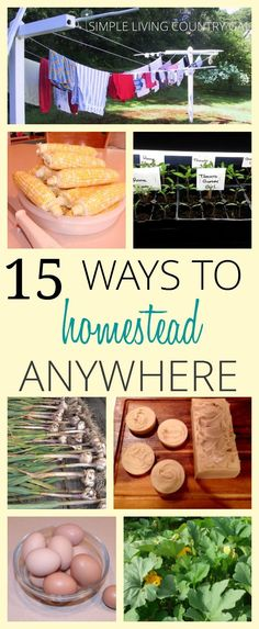 It doesn't matter where you live, in the country or a high rise apartment...you can be a homesteader. Follow these simple tips and tricks to make more, use less and save money and resources! via @SLcountrygal