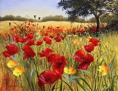 Mary Dipnall — (800×619)