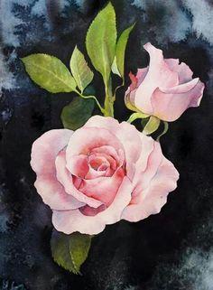 Watercolor Lafe