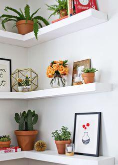 decoracao-plantas-estante-referans-blog-07.jpg (620×865)