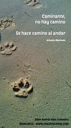 Antonio Machado - Caminante no hay camino, chanson Joan Manuel Serrat