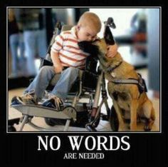 Handicap Kid Hugging A Dog, No Words Are Needed | Click the link to view full image and description : )