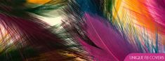 Colorful Feathers Facebook Cover