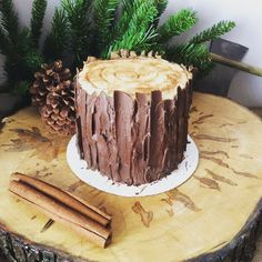 Lumberjack log cake for birthday. First Birthday Cakes, 1st Boy Birthday, 1st Birthday Parties, Birthday Ideas, Lumberjack Cake, Lumberjack Birthday Party, Wood Cake, Pear Cake, Salty Cake