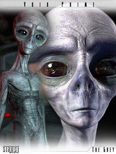 Risultati immagini per grey alien genesis Les Aliens, Aliens And Ufos, Ancient Aliens, Alien Gris, Madara Susanoo, Arte Alien, Alien Encounters, Alien Concept, Alien Races