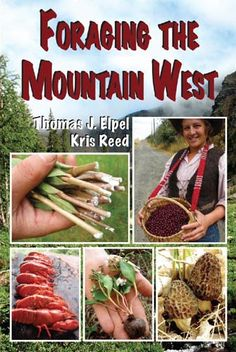 Foraging the Mountain West: Gourmet Edible Plants, Mushrooms, and Meat by Thomas J. Elpel and Kris Reed.
