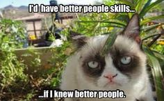 Grumpy Cat explains interpersonal relations.