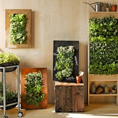 Williams Sonoma Freestanding Vertical Garden