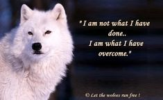 Tattoo quotes about strength warriors heart 21 ideas Tattoo quates Wolf Qoutes, Lone Wolf Quotes, Great Quotes, Me Quotes, Motivational Quotes, Inspirational Quotes, Promise Quotes, Be Wolf, Wolf Love