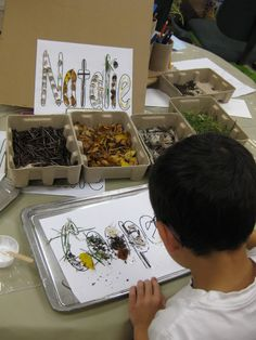 Transforming our Learning Environment into a Space of Possibilities: Natural Materials