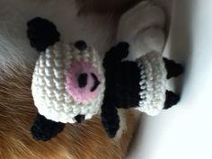 Panda.....en poes