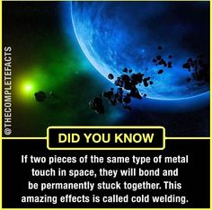 Wierd Facts, Wow Facts, Intresting Facts, Wtf Fun Facts, Some Amazing Facts, Interesting Facts About World, Unbelievable Facts, Random Science Facts, Science Quotes