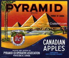 1950's Pyramid Co-Operative Association. Pentiction British Columbia