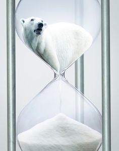 Un oso polar estrangulado en el tiempo El animal más emblemático del cambio climático es el oso polar (Ursus maritimus). El calentamiento de la Tierra provoca la desaparición del hielo, su hábitat natural, y obliga a estos animales a nadar enormes distancias en busca de comida. Esta composición, realizada por Victor van Gaasbeek, denuncia con maestría y de forma sintética esta situación; poniendo especial énfasis en el poco tiempo que nos queda para evitar la desaparición de esta especie.