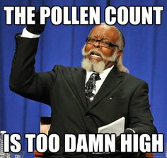 I love the smell of fresh spring air – that's when I can actually breathe through my nose, and stop my eyes from itching and watering. If you're an allergy sufferer like me, you know all too well that lately the pollen count has been horrendous, and your sinuses are not liking it one bit.