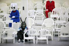 witte stoelen inzamelactie