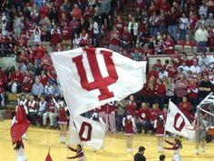 Indiana Hoosiers Basketball  Go Hoosiers!  #IUCollegeBasketball