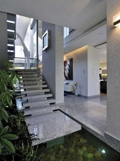 water garden and indoor plants for foyer decorating