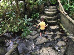 Randers Regnskov Amusement Parks, Travel Inspiration, Hiking Boots, Fun, Hilarious