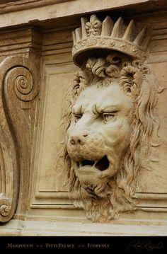 Lion, Palazzo Pitti, Firenze