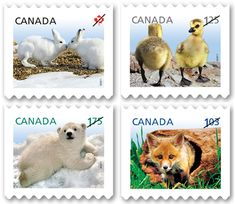 """Canada cutest stamps 2010 - Canadian definitives are """"workhorse"""" stamps—they are the most accessible of our stamps and those mostly used for mailings. This series features Canada's baby creatures In Memory Of Dad, Canada Images, First Day Covers, Love Stamps, Thinking Day, My Themes, Mail Art, Stamp Collecting, Postage Stamps"""