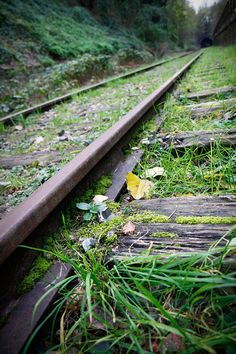 Urbex Facile | La Petite Ceinture | Paris 14ème 15ème | Urban Exploration | Abandoned railway in Paris | Just a Girl www.justagirl.fr