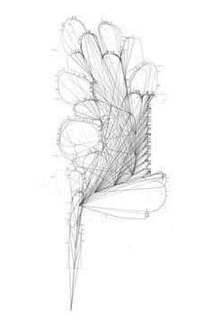 Diagrama del jardín. Fundación Giner de los Ríos por Amid.cero9.