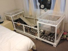 Sherlock's and Rhiley's cage