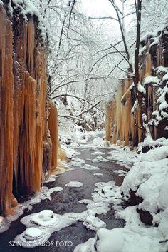 Bükki Nemzeti park, Tarjánka szurdok Hungary, Good To Know, Landscape, Places, Nature, Outdoor, Beautiful, Outdoors, Naturaleza
