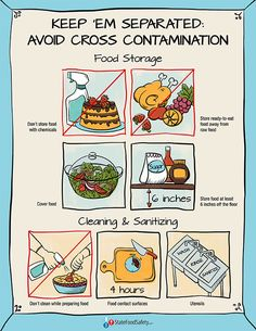 Keep 'Em Separated Poster | Keep foods separated during storage and preparation to avoid cross-contamination. Download this free poster and use it to teach about cross-contamination. | StateFoodSafety.com