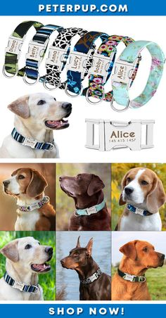 80a4e36b4093 Adjustable Custom Personalized Nylon Medium Large Dog Collar Engraved Tag