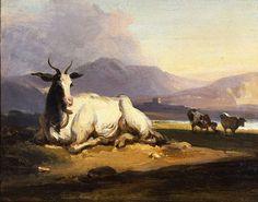 File:Goat in an Indian landscape.jpg