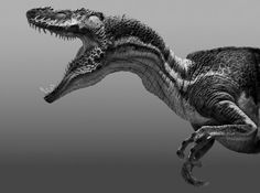 prehistoric creatures Peter Knig is a concept artist that has worked on over 30 feature films and several video game titles. Peter has spent his career sculpting, designing, anim Dinosaur Art, Dinosaur Fossils, Dinosaur History, Dinosaur Bones, Dinosaur Illustration, Concept Art World, Jurassic Park World, Extinct Animals, Prehistoric Creatures