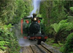The West Coast Wilderness Railway, Tasmania is a reconstruction of the Mount Lyell Mining and Railway Company railway between Queenstown and Regatta Point. Land Of Oz, Land Use, Queenstown Tasmania, Military Guard, Photo Supplies, Train Journey, Beautiful Places To Visit, Australia Travel, West Coast