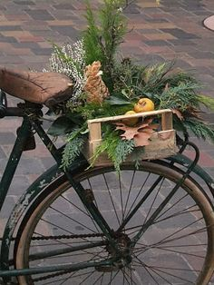 Great fall decorating for the old bike I have in my yard!