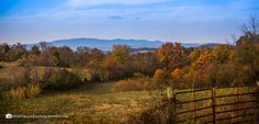 Set Apart, East Tennessee, Great Smoky Mountains, Jewel Tones, Gates, Distance, Beautiful Homes, Workshop, Around The Worlds