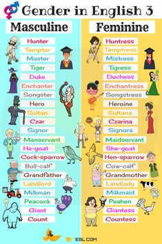 List of Genders of Nouns! Learn the Gender of Nouns and useful list of Masculine and Feminine words in English with picture and video. English Grammar Worksheets, Learn English Grammar, English Vocabulary Words, Learn English Words, English Writing, English Study, English Lessons, Learning English For Kids, English Language Learning