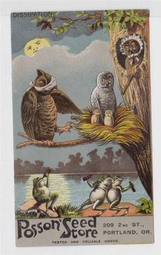 RARE Posson' Seed Store Owls Drunk Frogs Victorian Trade Card Portland Oregon | eBay