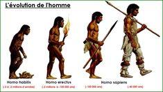 La préhistoire Homo Habilis, Primitive Survival, Human Evolution, Montessori Materials, Darwin, Social Studies, Superhero, Education, Recherche Google