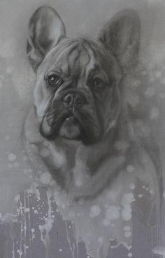 Jennifer Koning Bruno de franse bulldog, houtskool en wit krijt 30 x 40 cm