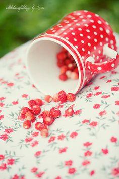 Loretta Blog, All the beautiful things