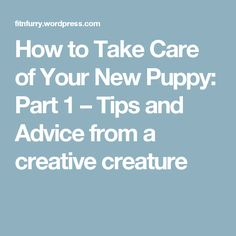 How to Take Care of Your New Puppy: Part 1 – Tips and Advice from a creative creature