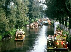 Xoximilco--floating gardens, Mexico City.