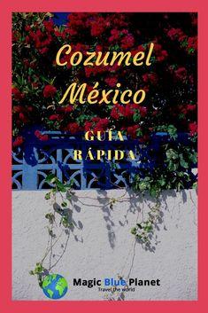 Al menos desde que Cozumel se hizo conocida como un paraíso de buceo por Jacques Cousteau, la isla ha sido un destino popular para los visitantes de todo el mundo. Muchos vienen como turistas de un solo día con cruceros o en ferry desde Playa del Carmen, pero Cozumel tiene mucho que ofrecer con su ambiente isleño y el encanto de una pequeña ciudad mexicana, incluso para una estancia más larga...  #magicblueplanet #cozumel #mexico #quintanaroo #mexicodesconocido Cozumel Mexico, Jacques Cousteau, Ferry, Neon Signs, Popular, World, Travel, Cozumel Island, Coral Reefs