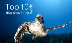 Diving in Europe: 10 Best Dive Sites