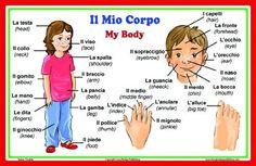 Italian Language School Poster: Italian Words About Parts of the Body, with English Translation - Bilingual Classroom Chart http://www.amazon.com/gp/product/B00KSI4H80/ref=nosim?tag=ireadi0a-20: