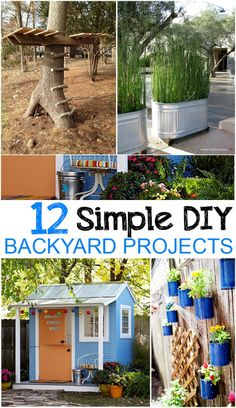12 Easy DIY Backyard Projects -