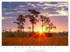 FLORIDA- SUNRISE